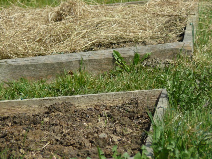 Cr er un potager handmade et fait maison for Potager permaculture plan